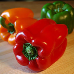 Peppers. Photo Copyright (c) LVO'Connell 2008. All Rights Reserved.
