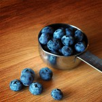 Blueberries. Photo Copyright (c) LVO'Connell 2008. All Rights Reserved.