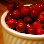 Cranberries. Photo Copyright (c) LVO'Connell 2008. All Rights Reserved.