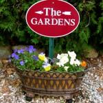 Cape Cod Bed & Breakfast Pansies in the Garden