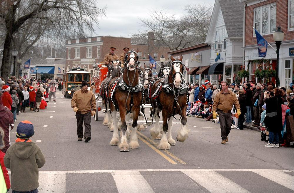 Cape Cod Holiday's by the Sea Parade Horses