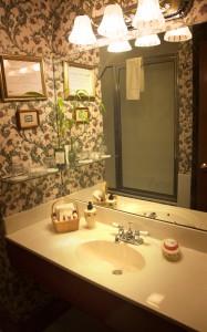 Bathroom with Jacuzzi-style tub.