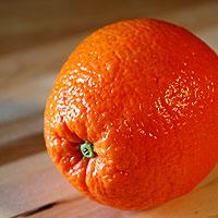 Cape gourmet breakfast orange