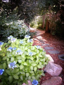 Cape Cod Bed and Breakfast Garden Path
