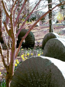 Old Mill Stones at Sphor Gardens