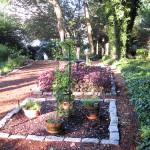 Cape Cod herb garden
