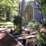 Cape Cop B&B herb garden