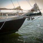 Cape Cod Sailing Liberte's Bow