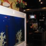 DJ's Aquarium