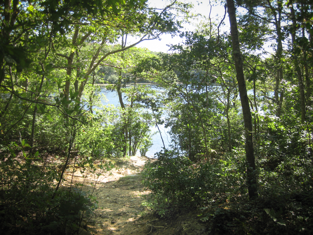 Cape Cod Activities: Beebe Woods Ice House Pond