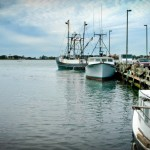 Woods Hole Fishing Derby