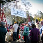Cape Cod Marathon Behind the Line