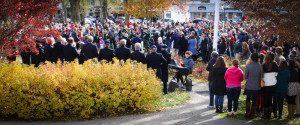 Crowd at Veteran's Day Ceremony