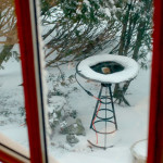 Blizzard Janice: warm Bird bath