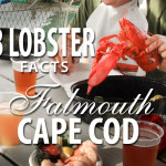 8 Lobster Facts