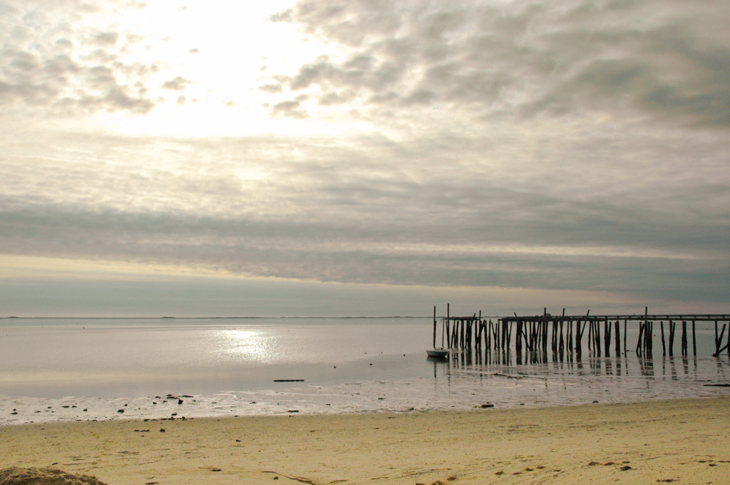 Winter beach in Provincetown Cape Cod