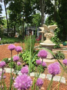 Cape Cod Herb Garden in May
