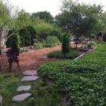 Cape Cod herb garden early summer