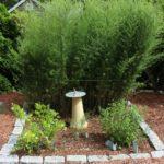 Cape Cod Herb Garden #2