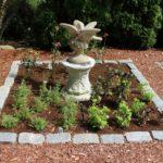 Cape Cod Herb Garden #6
