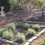 Cape Cod Herb Garden #8