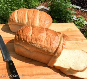 Portuguese Sweet Bread Recipe at the Palmer House Inn in Falmouth, Cape Cod, Massachusetts, USA.