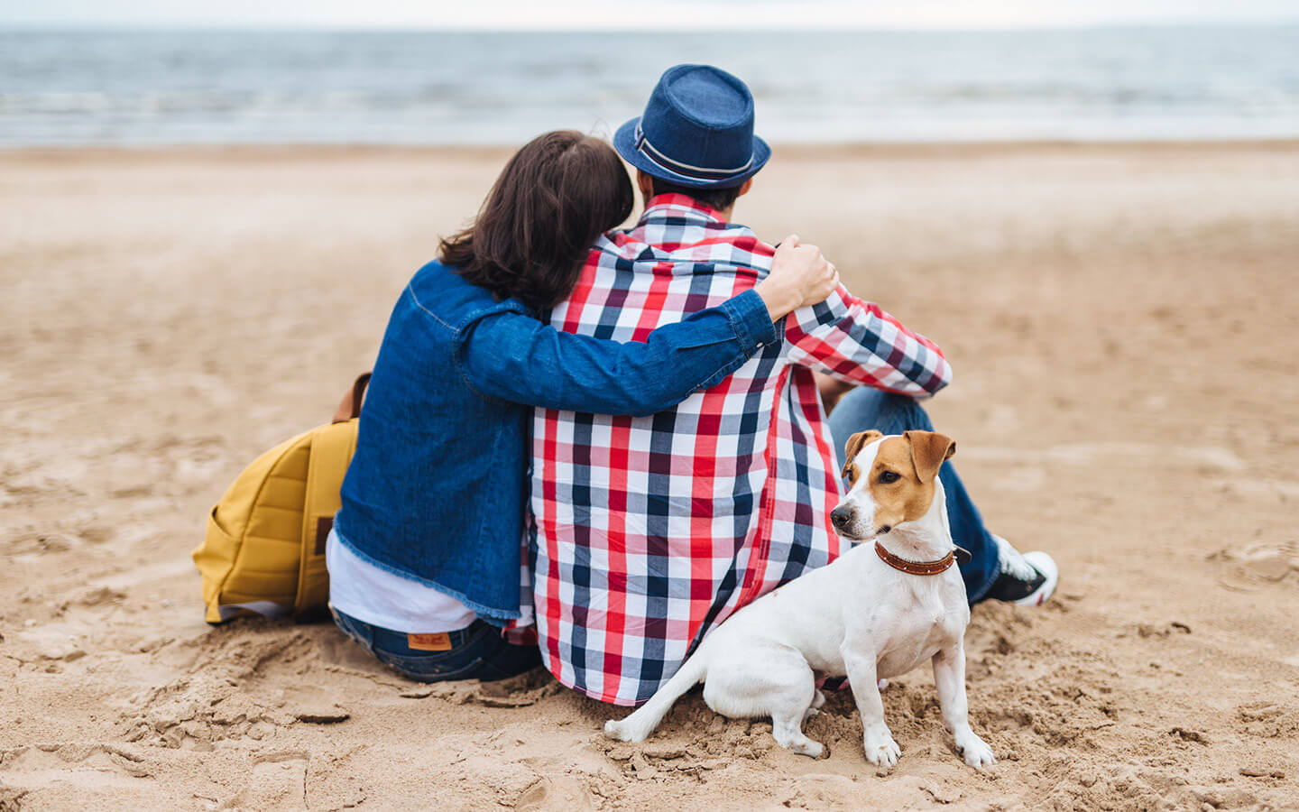 Couple sitting with their dog on the beach in Cape Cod