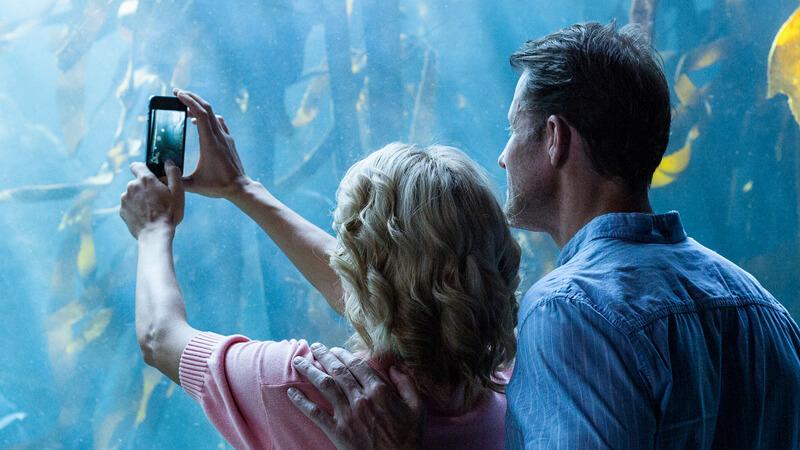 couple taking pics of fish at an aquarium