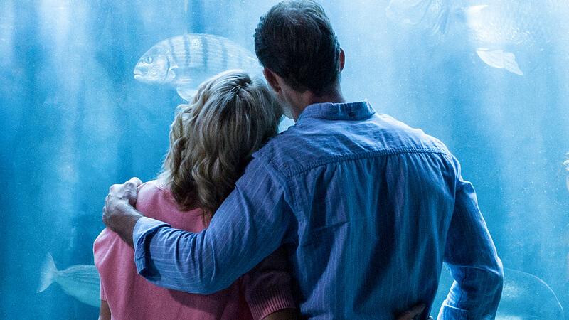 Couple at an aquarium embracing