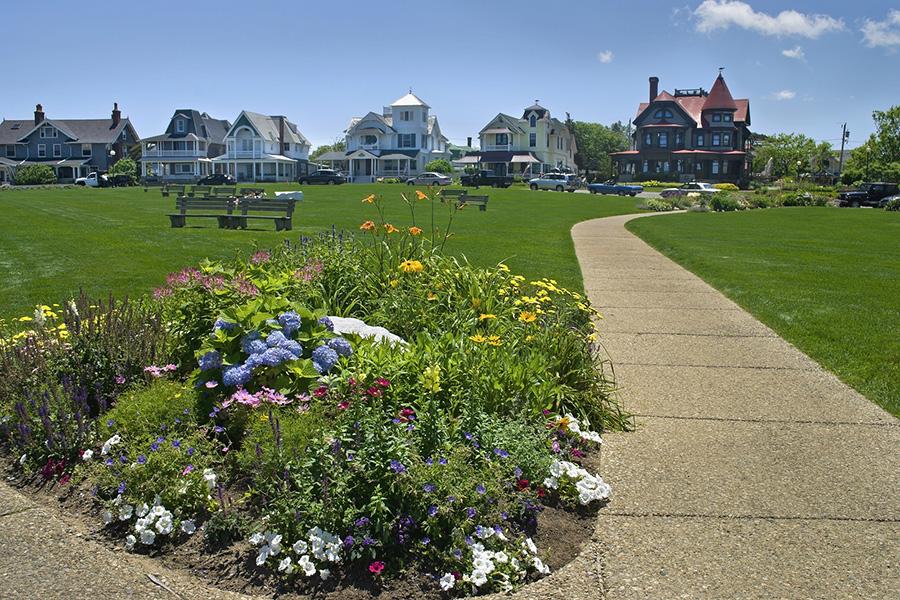 Martha's vineyeard park with houses