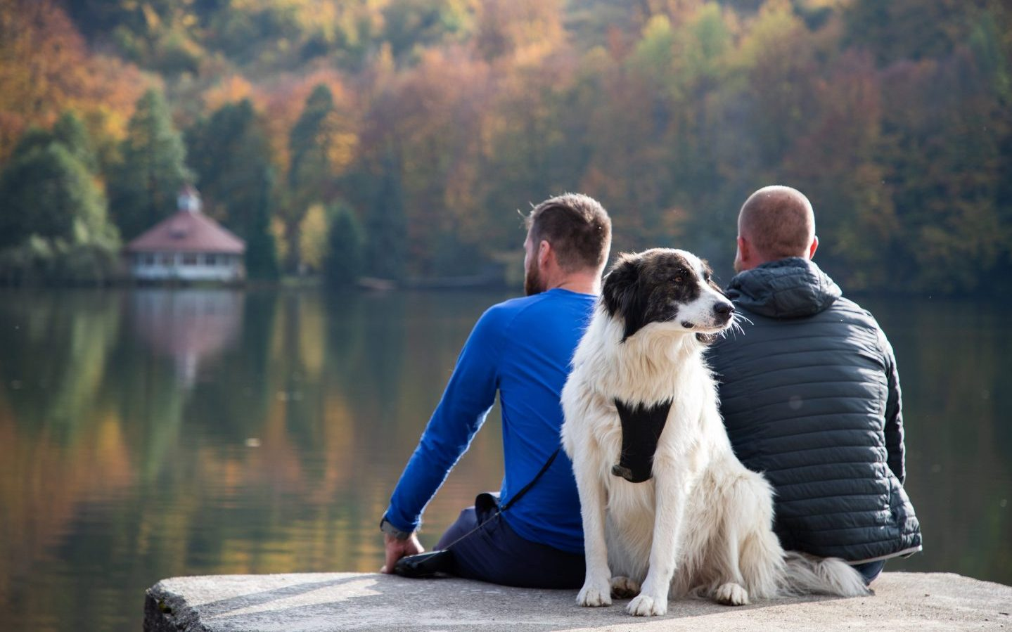 a couple sitting on a lake with their dog